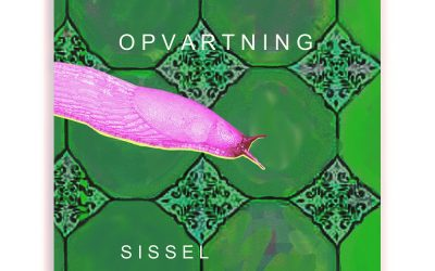 Sommerlæsning: Ny Novellesamling om Kolonihavelivet